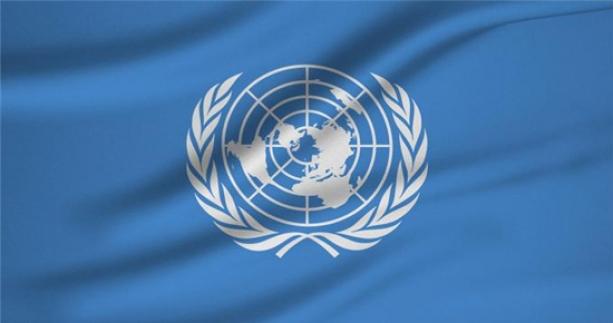 BM'den terörle mücadele için yeni karar
