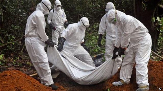 Nijerya Ebola'dan Kurtuldu