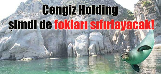 Cengiz Holding şimdi de fokları sıfırlayacak!