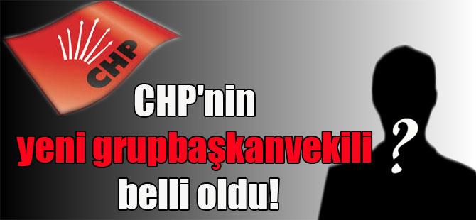CHP'nin yeni grupbaşkanvekili belli oldu!