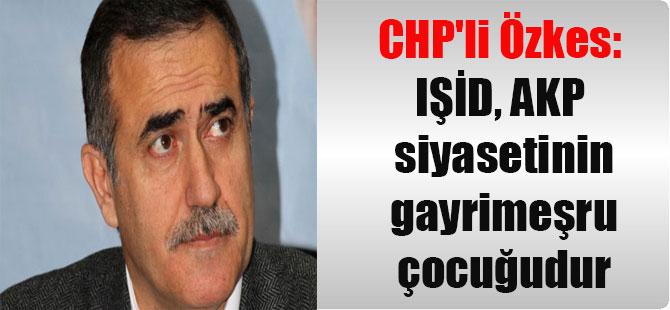CHP'li Özkes: IŞİD, AKP siyasetinin gayrimeşru çocuğudur