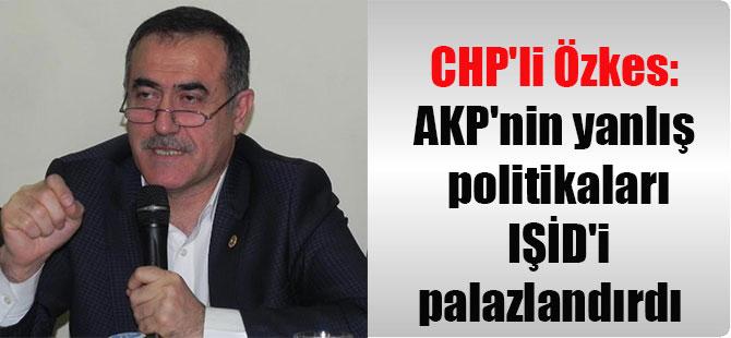 CHP'li Özkes: AKP'nin yanlış politikaları IŞİD'i palazlandırdı