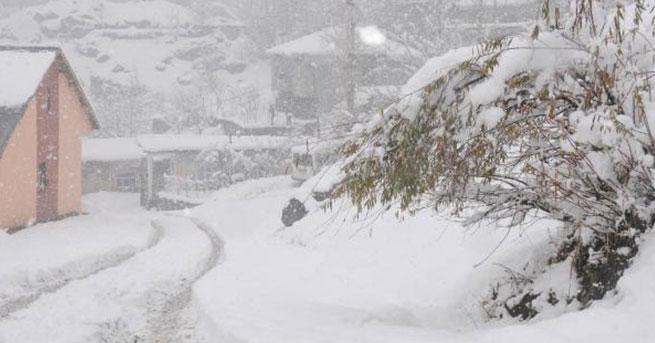 Van ve Hakkari'de kar yolları kapattı