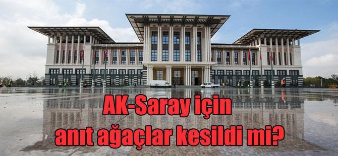 AK-Saray için anıt ağaçlar kesildi mi?