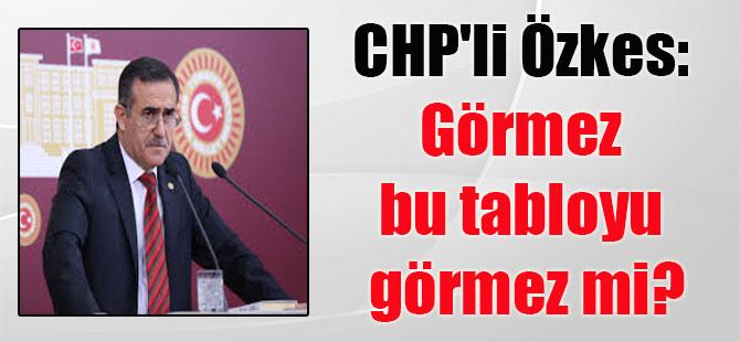 CHP'li Özkes: Görmez bu tabloyu görmez mi?