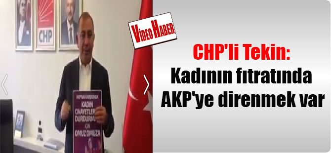 CHP'li Tekin: Kadının fıtratında AKP'ye direnmek var
