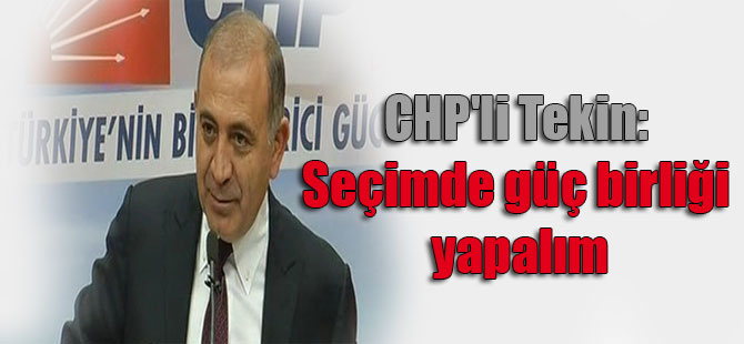 CHP'li Tekin: Seçimde güç birliği yapalım