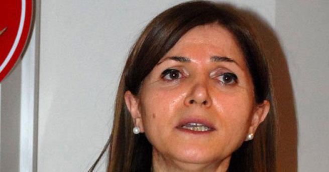 MHP'li Topçu: Doğu Anadolu'da devlet yok