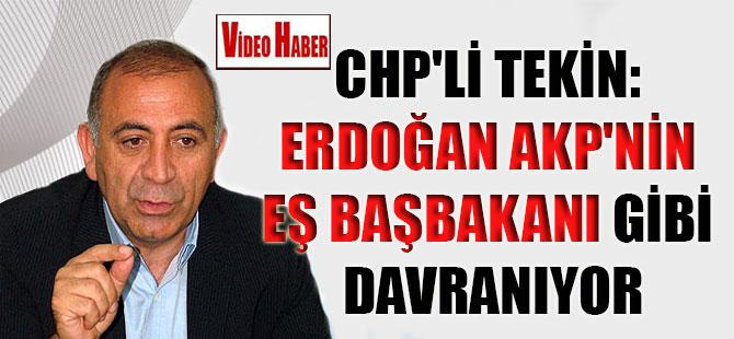 CHP'li Tekin: Erdoğan AKP'nin eş başbakanı gibi davranıyor