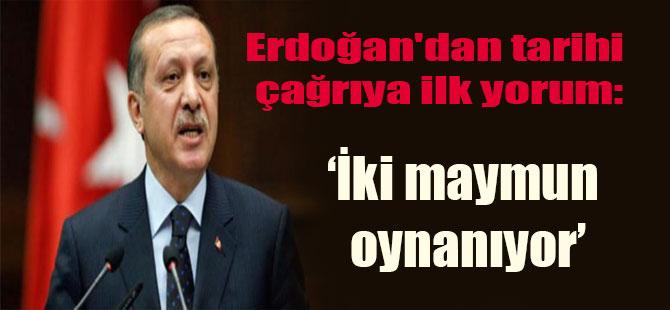 Erdoğan'dan tarihi çağrıya ilk yorum: İki maymun oynanıyor