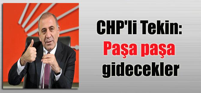 CHP'li Tekin: Paşa paşa gidecekler