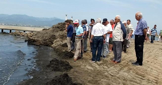 Burhaniye'de deniz kirliliği tepkisi