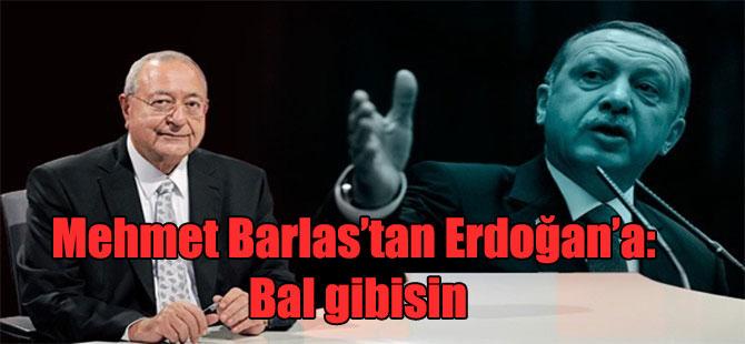 Mehmet Barlas'tan Erdoğan'a: Bal gibisin