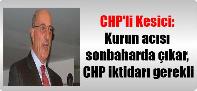 CHP'li Kesici: Kurun acısı sonbaharda çıkar, CHP iktidarı gerekli