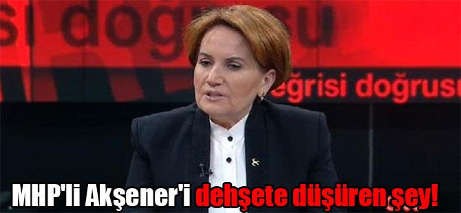 MHP'li Akşener'i dehşete düşüren şey!
