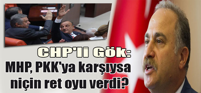 CHP'li Gök: MHP, PKK'ya karşıysa niçin ret oyu verdi?