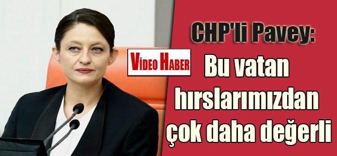 CHP'li Pavey: Bu vatan hırslarımızdan çok daha değerli