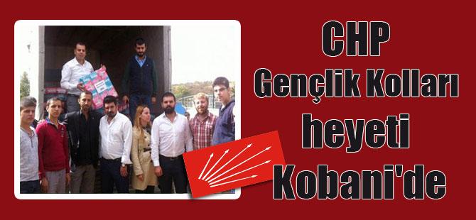 CHP Gençlik Kolları heyeti Kobani'de
