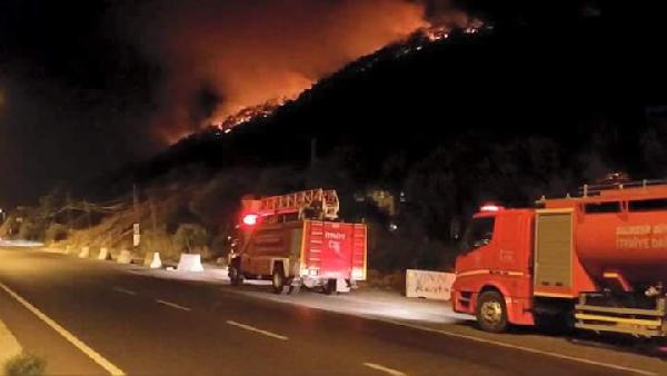 Edremit'te orman yangını