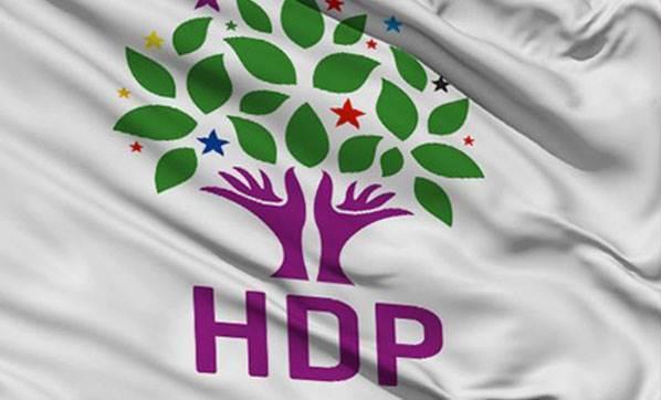 HDP'li Ömer Faruk Gergerlioğlu yeniden milletvekili