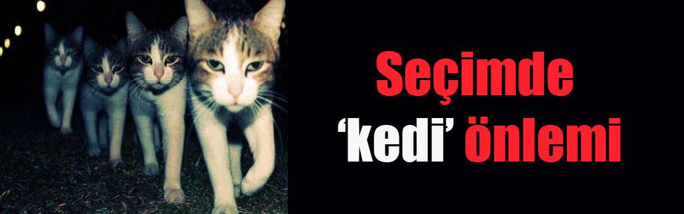 Seçimde 'kedi' önlemi