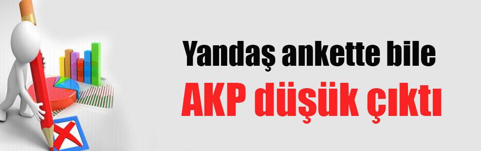 Yandaş ankette bile AKP düşük çıktı
