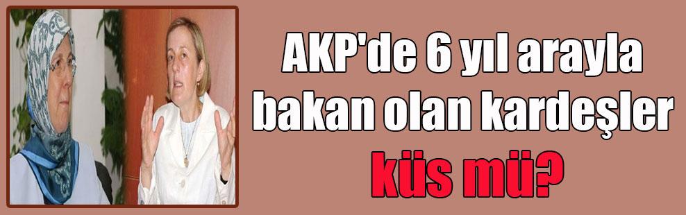 AKP'de 6 yıl arayla bakan olan kardeşler küs mü?