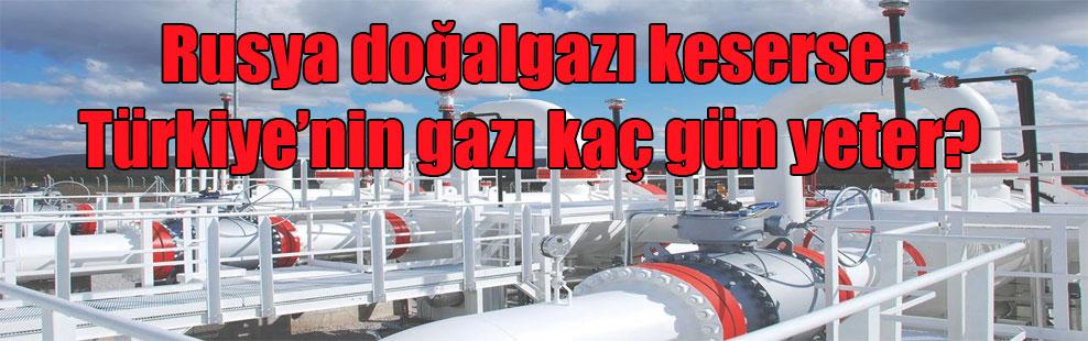 Rusya doğalgazı keserse Türkiye'nin gazı kaç gün yeter?