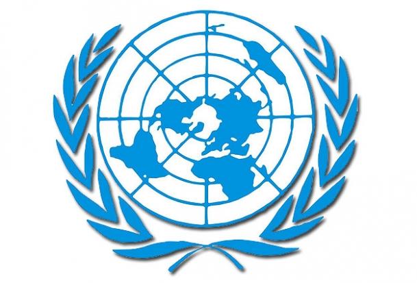 BM İnsan Hakları Konseyi'nde Gülmen ve Özakça açıklaması