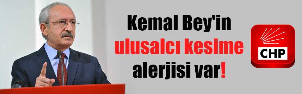 Kemal Bey'in ulusalcı kesime alerjisi var!