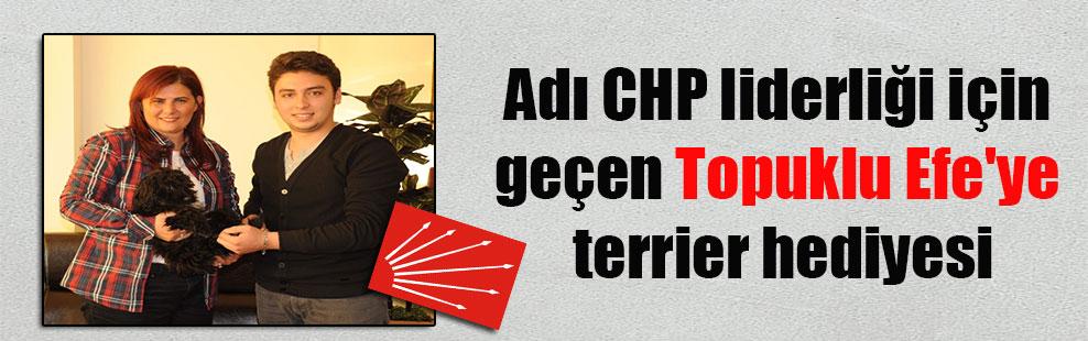 Adı CHP liderliği için geçen Topuklu Efe'ye terrier hediyesi