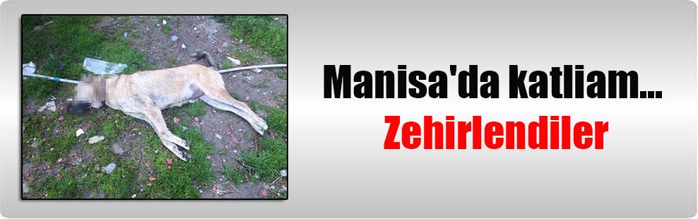 Manisa'da katliam… Zehirlendiler