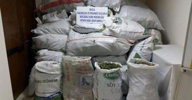 Muğla'nın en büyük uyuşturucu operasyonu