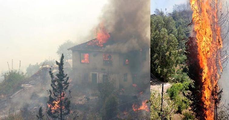 Antalya'daki yangın büyüyerek devam ediyor