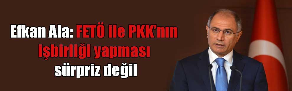 Efkan Ala: FETÖ ile PKK'nın işbirliği yapması sürpriz değil