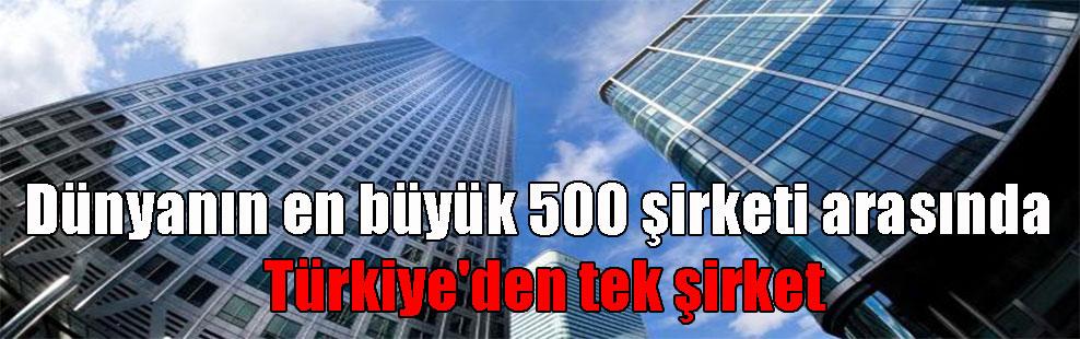 Dünyanın en büyük 500 şirketi arasında Türkiye'den tek şirket
