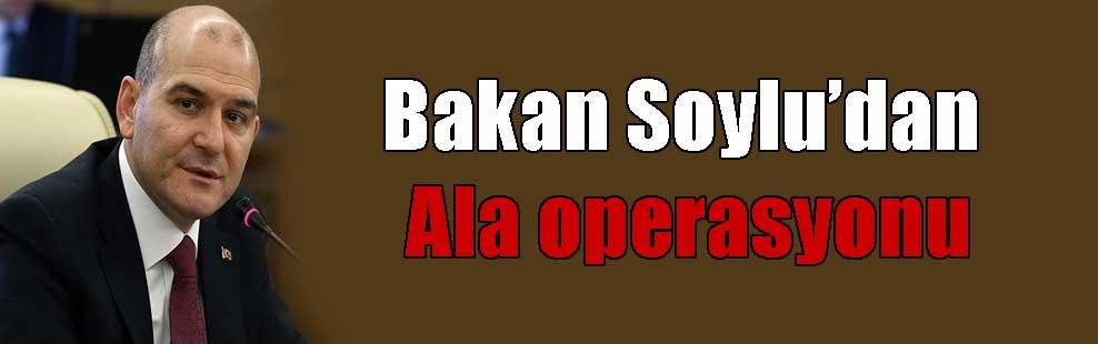 Bakan Soylu'dan Ala operasyonu
