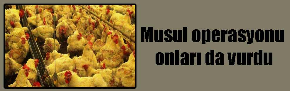 Musul operasyonu onları da vurdu