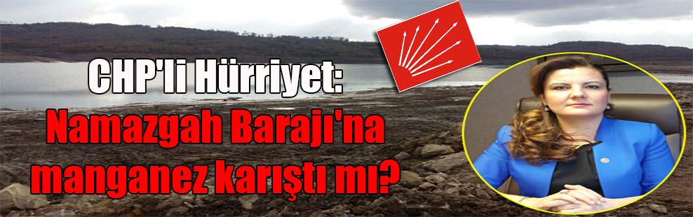 CHP'li Hürriyet: Namazgah Barajı'na manganez karıştı mı?