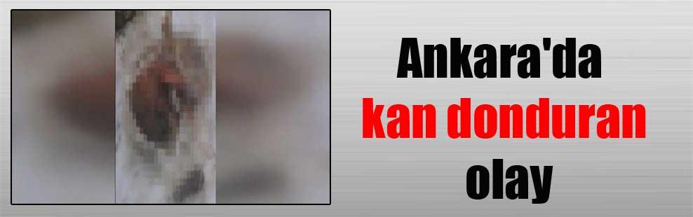 Ankara'da kan donduran olay