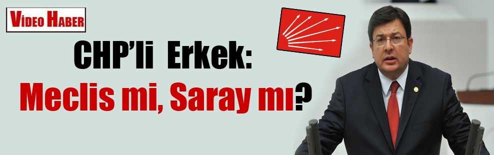 CHP'li  Erkek: Meclis mi, Saray mı?