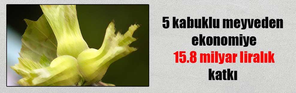5 kabuklu meyveden ekonomiye 15.8 milyar liralık katkı