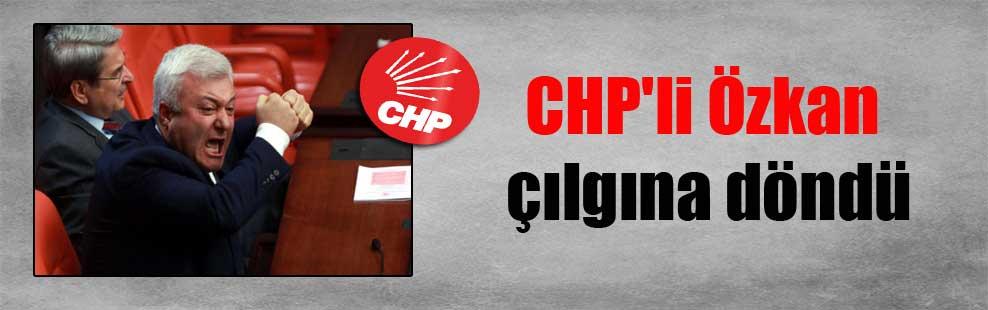 CHP'li Özkan çılgına döndü