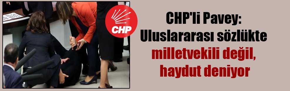 CHP'li Pavey: Uluslararası sözlükte milletvekili değil, haydut deniyor