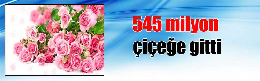 545 milyon çiçeğe gitti