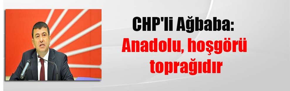 CHP'li Ağbaba: Anadolu, hoşgörü toprağıdır