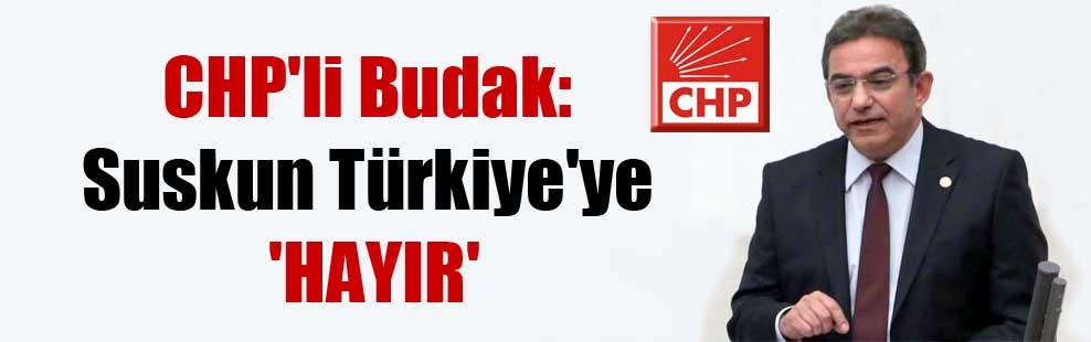 CHP'li Budak: Suskun Türkiye'ye 'hayır'