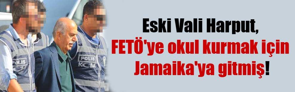Eski Vali Harput, FETÖ'ye okul kurmak için Jamaika'ya gitmiş!