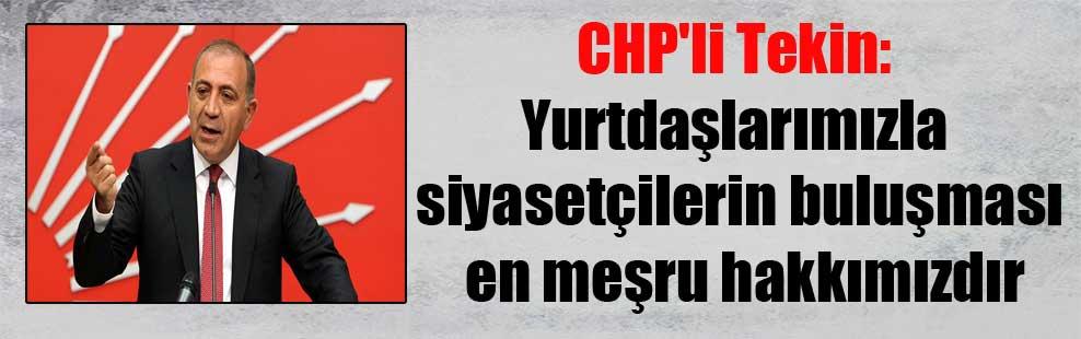 CHP'li Tekin: Yurtdaşlarımızla siyasetçilerin buluşması en meşru hakkımızdır