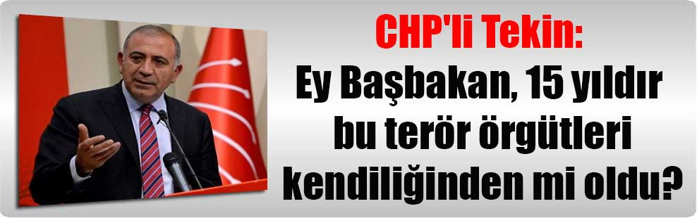 CHP'li Tekin: Ey Başbakan, 15 yıldır bu terör örgütleri kendiliğinden mi oldu?